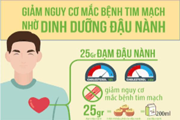 Đậu nành giảm nguy cơ tim mạch