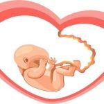 Phá thai tuần thứ 2 như thế nào cho an toàn?